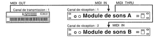Schéma représentant le branchement d'un clavier sur deux expandeurs